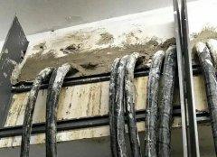 电缆管道封堵反反复复何时休