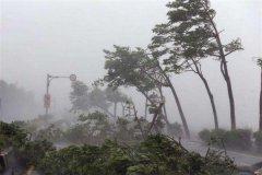 """台风""""山竹""""来袭 南方电网做了什么"""
