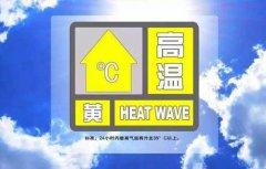 """你那儿气温热了吗?""""输配电""""助力清凉一夏"""